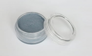 Common body painting Fengda light grey 10 g